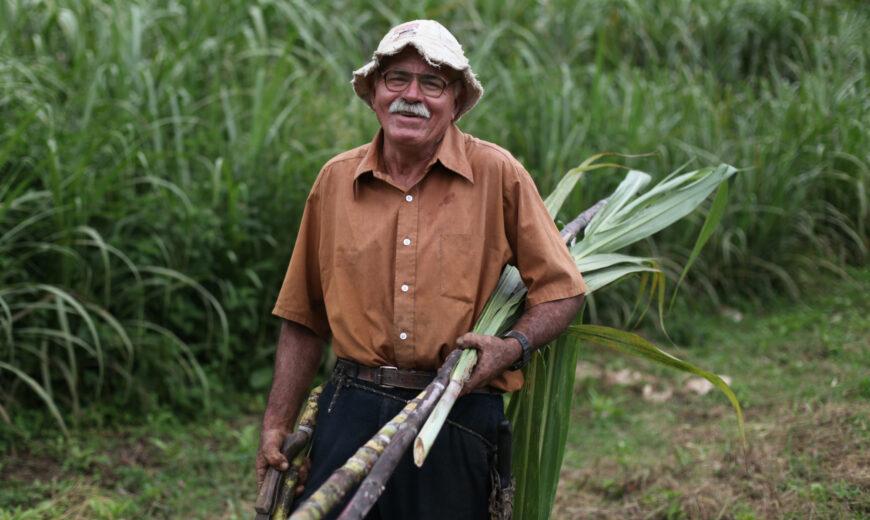 Costa Rica COOPECAÑERA Sugar