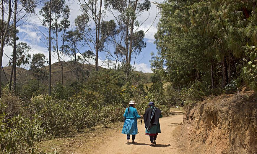 2021_mountainside of Cajas, Northern Peru