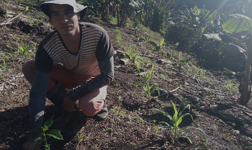 What is the power of data for coffee farmers