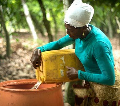 Beatrice is a cocoa farmer at a Fairtrade cooperative in Ghana. For Beatrice, climate change is one of the biggest challenges she faces – for several years rain no longer comes when she expects it, effecting her farm's productivity and making it hard to plan activities on her farm.
