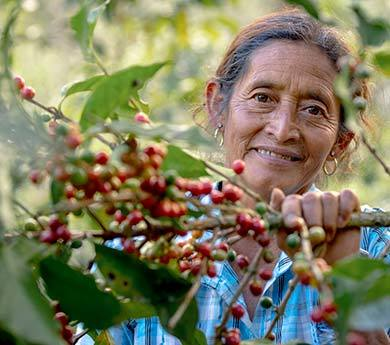 Carmelina is a coffee farmer at the Fairtrade certified ACODIHUE cooperative, in Guatemala