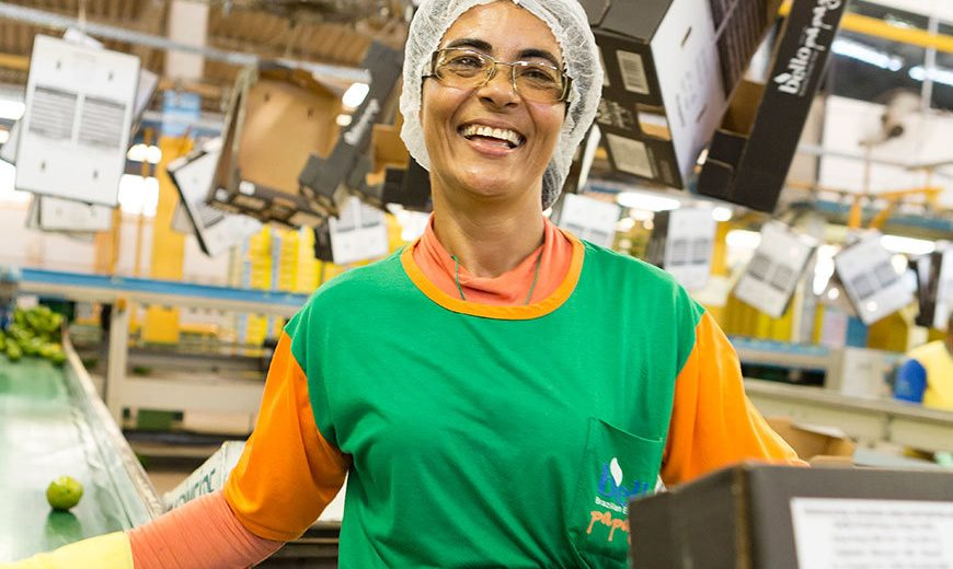 25862 Worker Packing Papayas Brazil 870