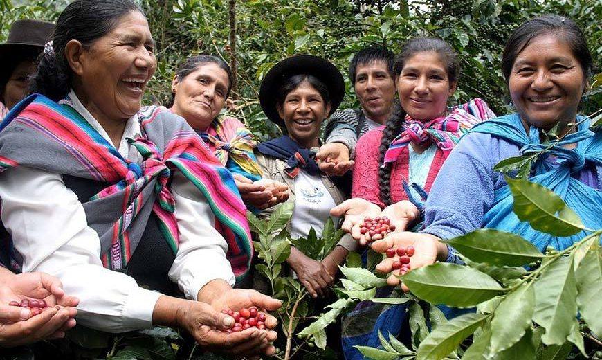 26861 Peru Coffee Farmers Group 870