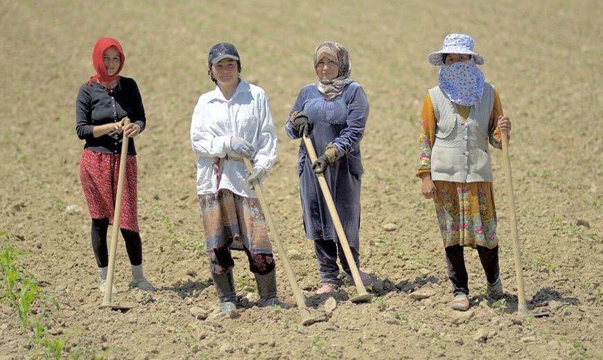 27128 Female Workers Kyrgyzstan 870