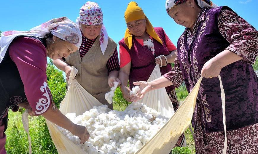 27131 Four Women Cotton Farmers Kyrgyzstan 870