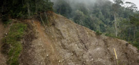 Deforestation and cultivation of the steep hills in Central Aceh destabilize the already fragile slopes.