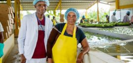 Jacques Antoine (left) works at BANAFEM, a Fairtrade certified banana plantation in the Dominican Republic. With his earnings he's putting himself through university to reach his goal of becoming a doctor.