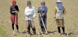 Workers at the Fairtrade certified Bio Farmer Agricultural Commodity and Service Cooperative, Kyrgyzstan