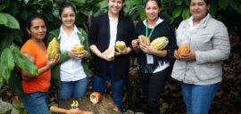 Rosa Maribel Cortes, Julibee Portillo, Alejandra Lemus, Julissa Medina y Sandra Buezo. All work at the Xol chocolate factory in Honduras. Xol chocolate is a brand of the Fairtrade-certified COAGRICSAL coop.
