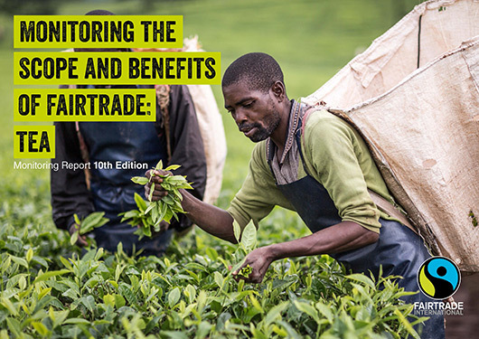 Click here to read our monitoring report on tea